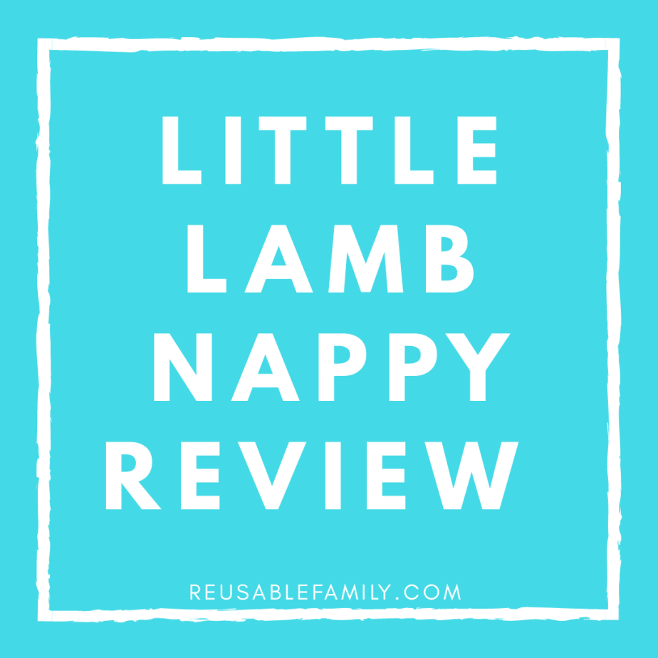 Little Lamb Review