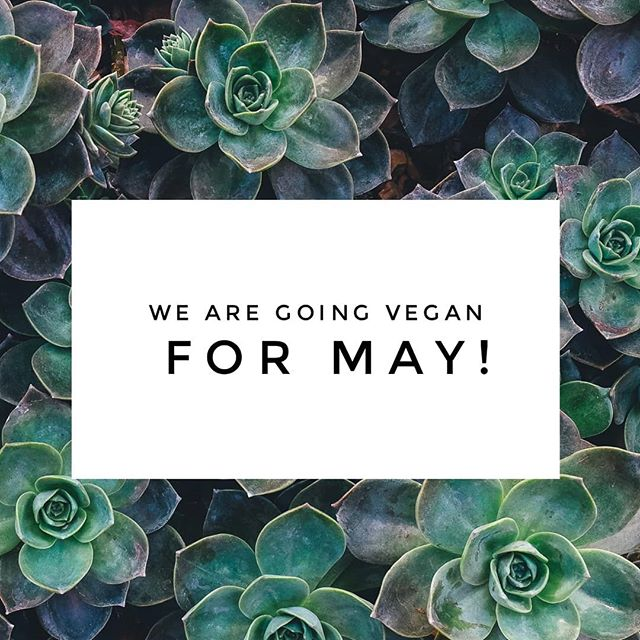 New Green Products & Going Vegan for May
